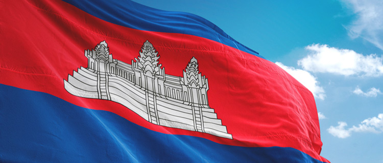 二国間協定とは?カンボジアは送り出しが必須。